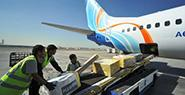 Авиаперевозки грузов: индивидуальный подход к оказанию логистических услуг