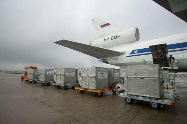 Автоперевозки скоропортящихся грузов По России